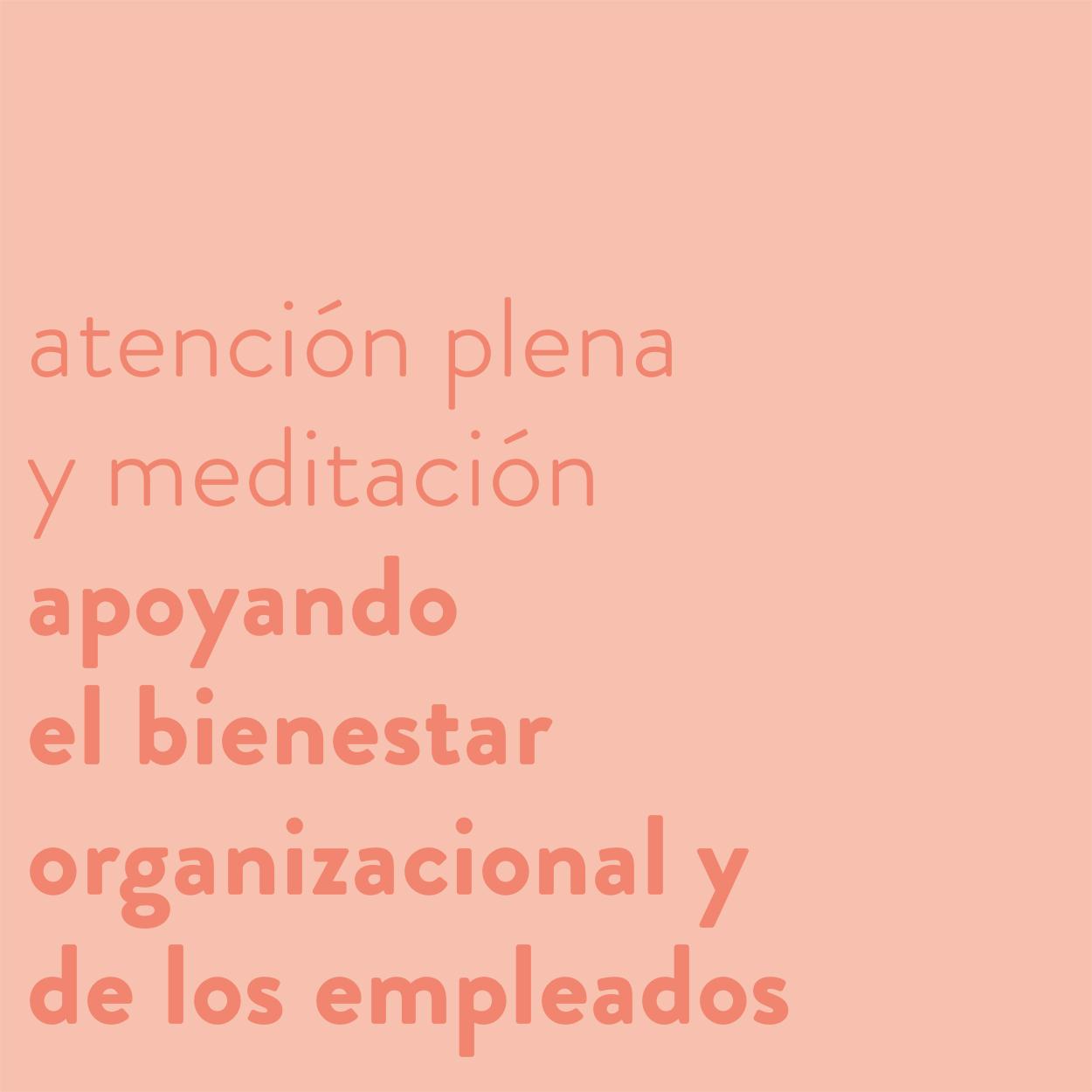 El poder de la atención plena (mindfulness) y la meditación para apoyar el bienestar organizacional y de los empleados