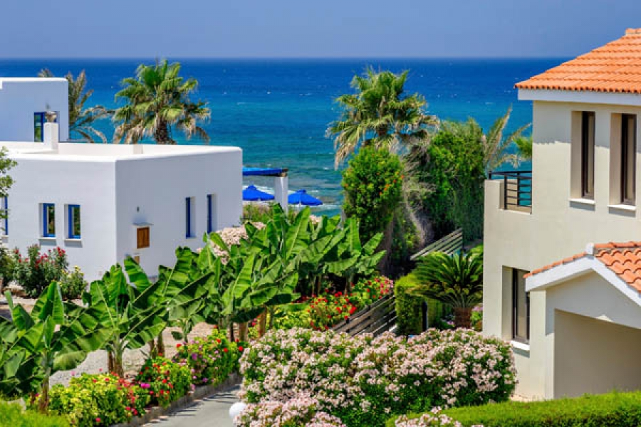 Business in Cyprus. Is it worth opening your own business on the island and how much money can you make from it?