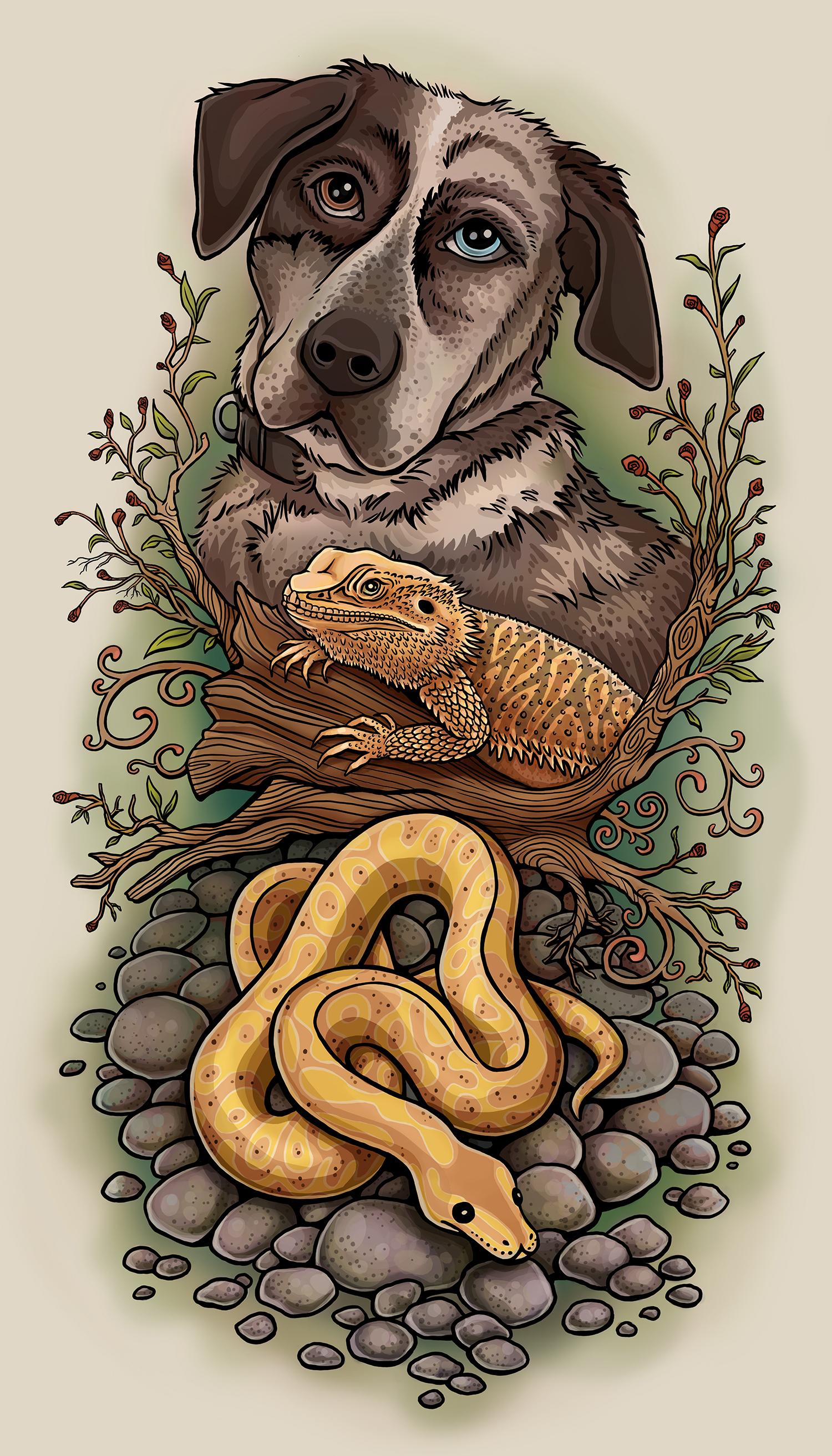 Pet portraits illustration. Dog Dearded Dragon and Snake.