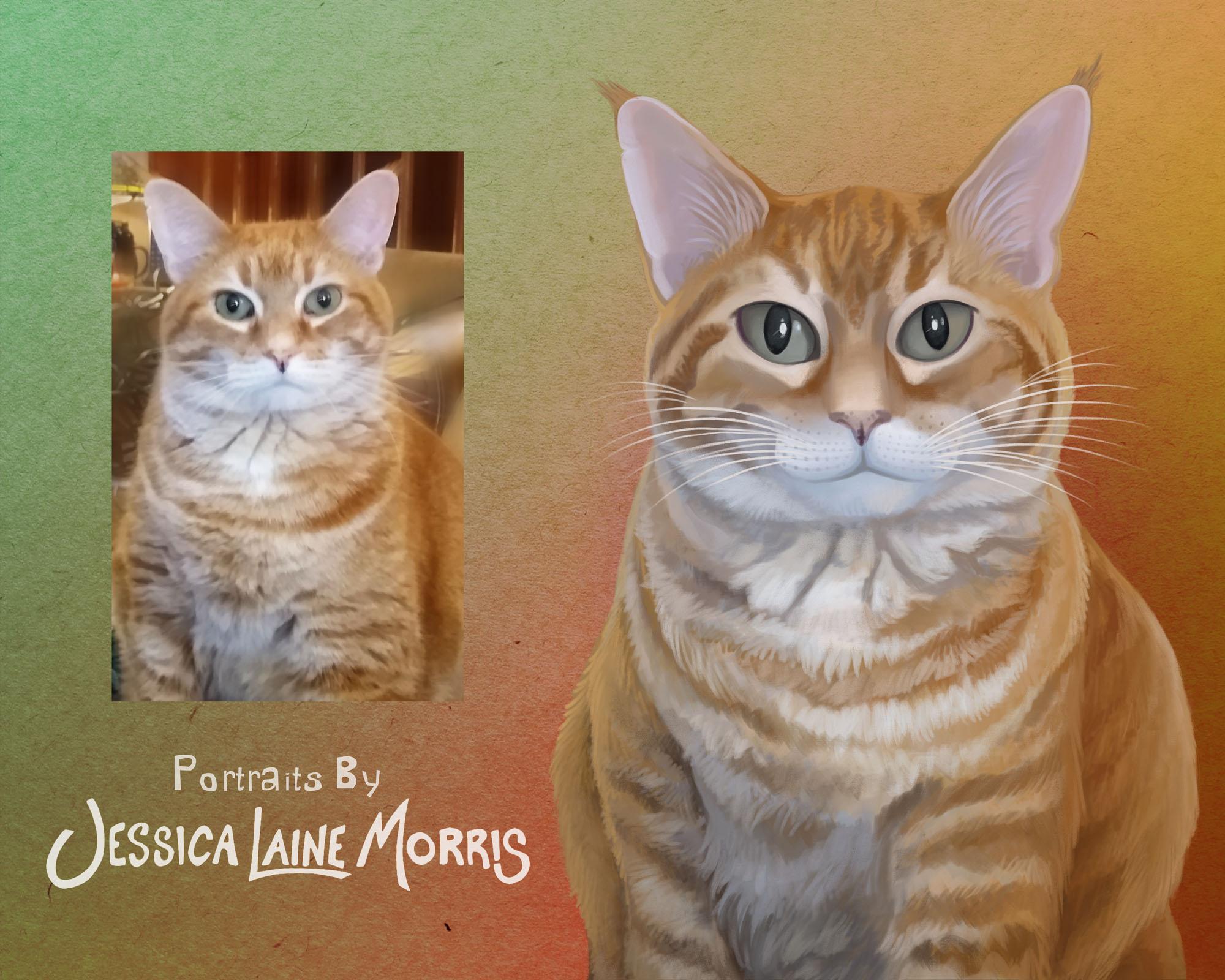 Orange Tabby Cat Digital Pet Portrait Illustration