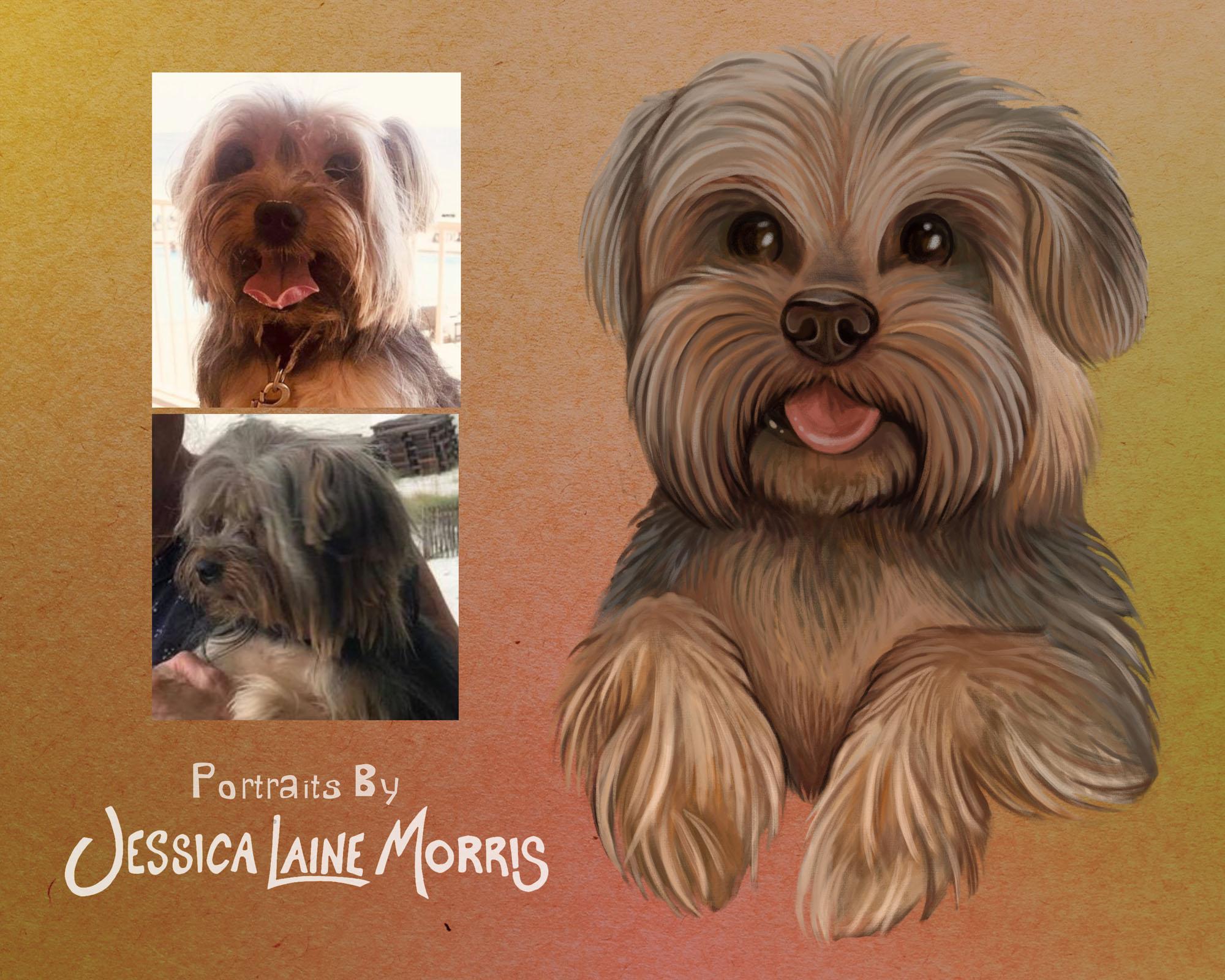 Yorkie Terrier Digital Pet Portrait Illustraion