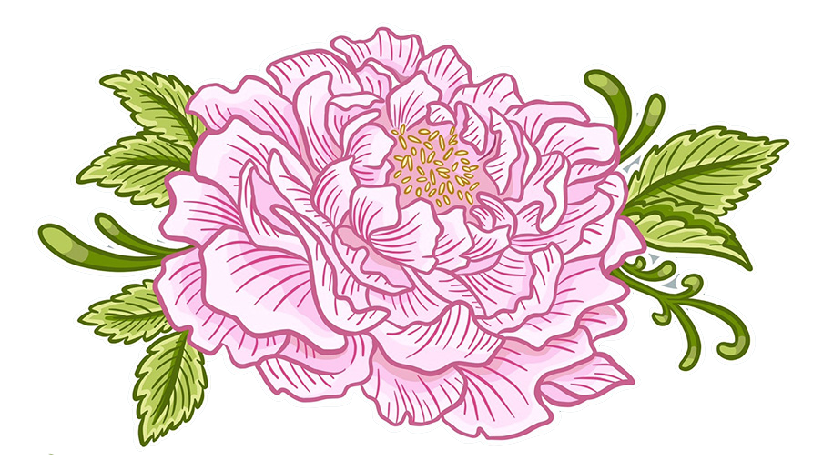 Floral Pink Peony Girly Cartoon Illustration Logo Graphic by Jessica Laine Morris