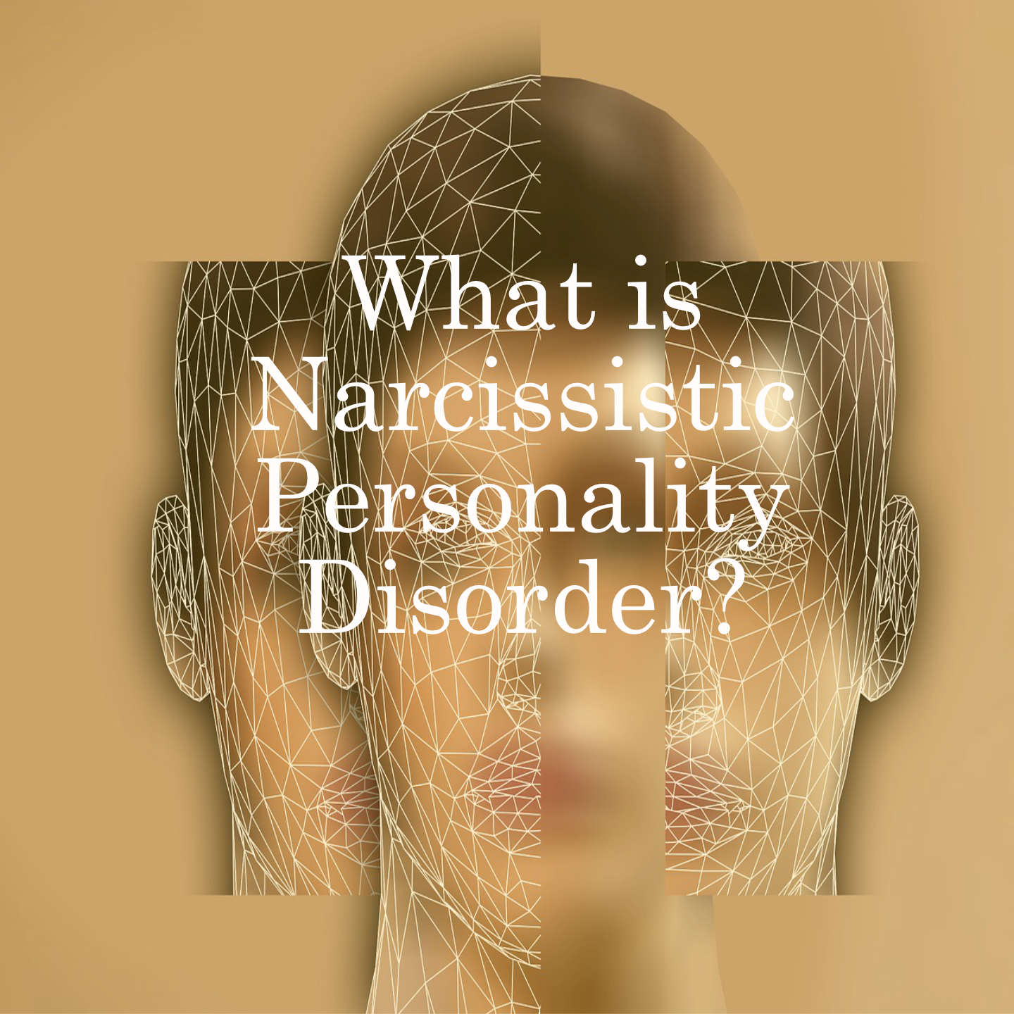 What is Narcissistic Personality Disordar? The vital things you need to know.