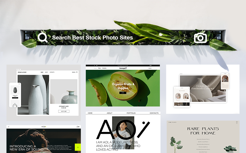 20 Best Stock Photo Sites for Web Design and Marketing