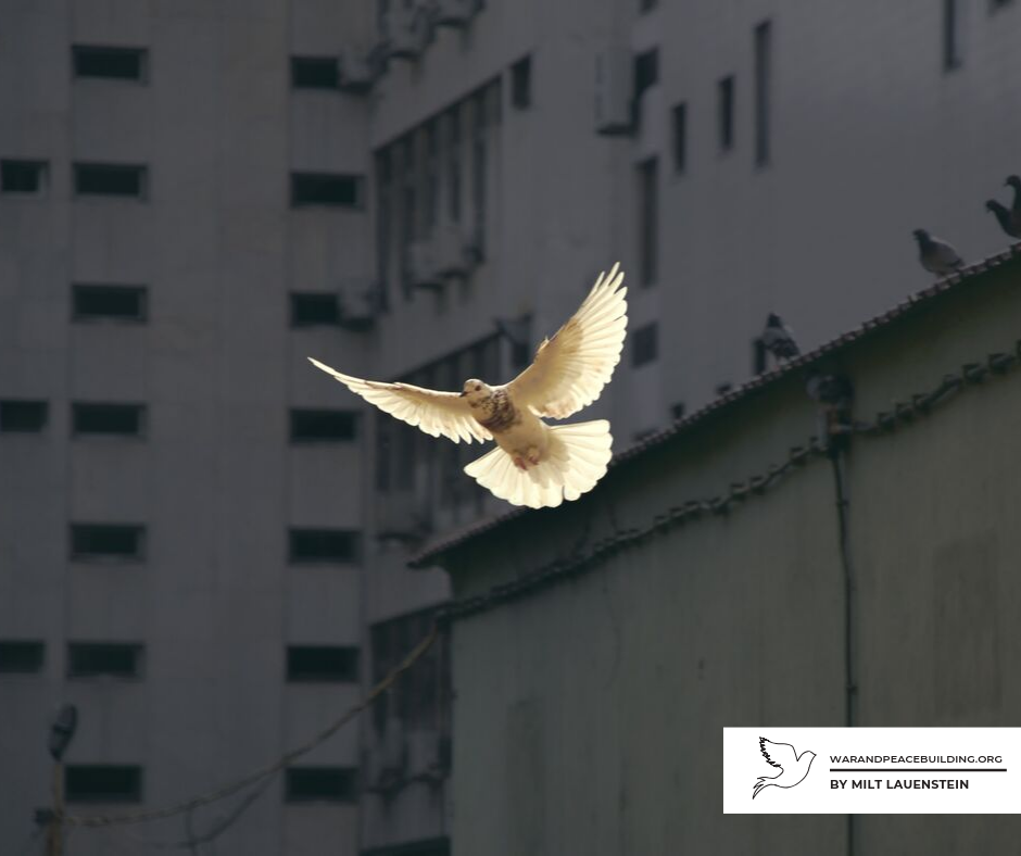 The Potential for Peacebuilding
