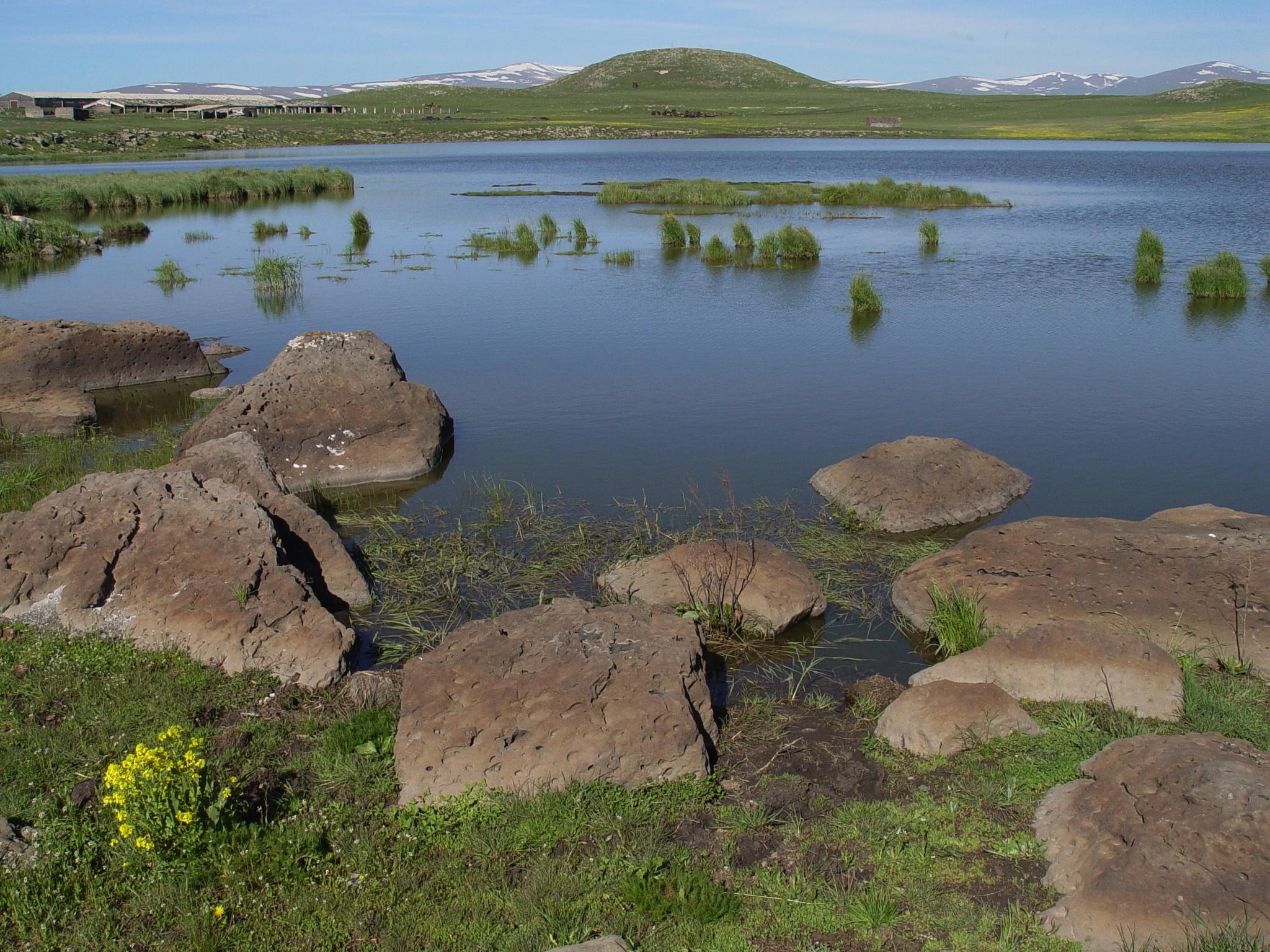 Arpi Lake
